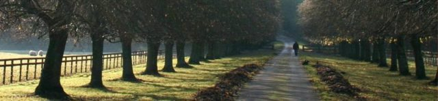 cropped-path-e13918218595342.jpg