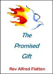 cover2-promised-gift